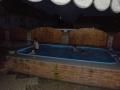 Pár bazénů na zahřátí :D