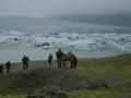 039_Fjallsárlón a koně