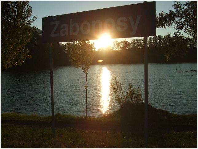 Zabonosy2